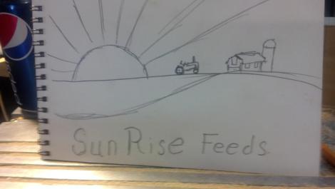 Sun Rise Feeds