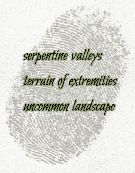 makesomething-thumbprint-haiku