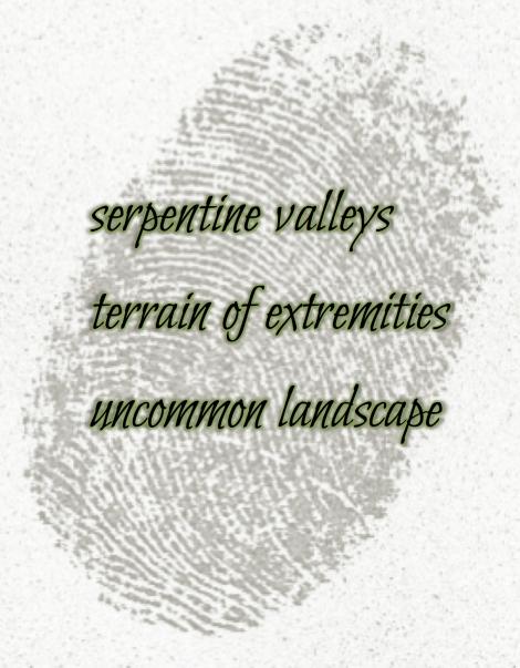 makesomething-thumbprint-haiku